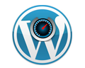 wordpress speed optimization services